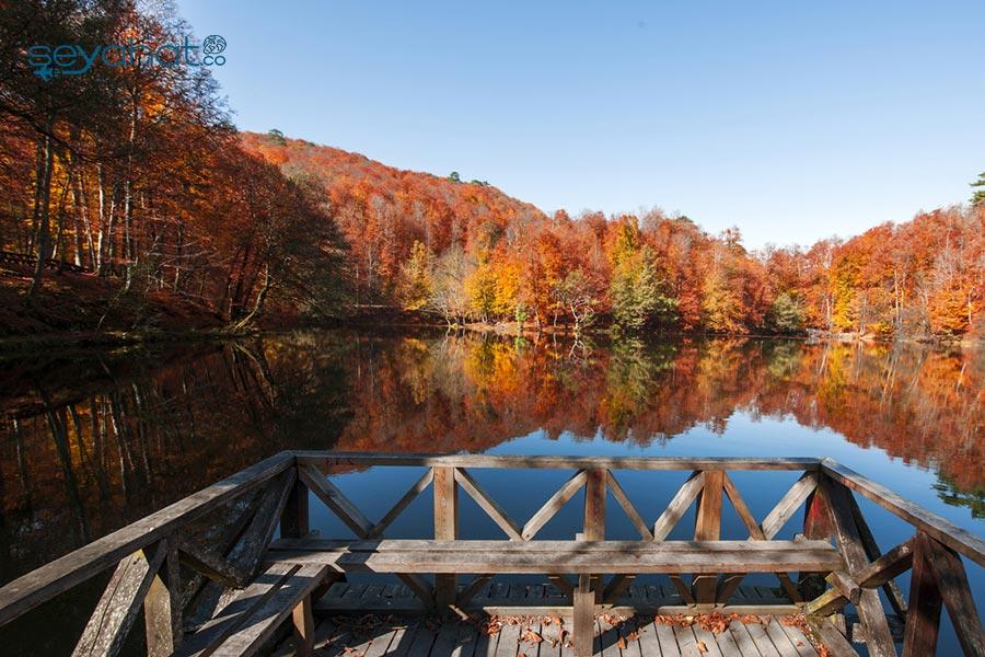 Abant Tabiat Parkı Sonbahar